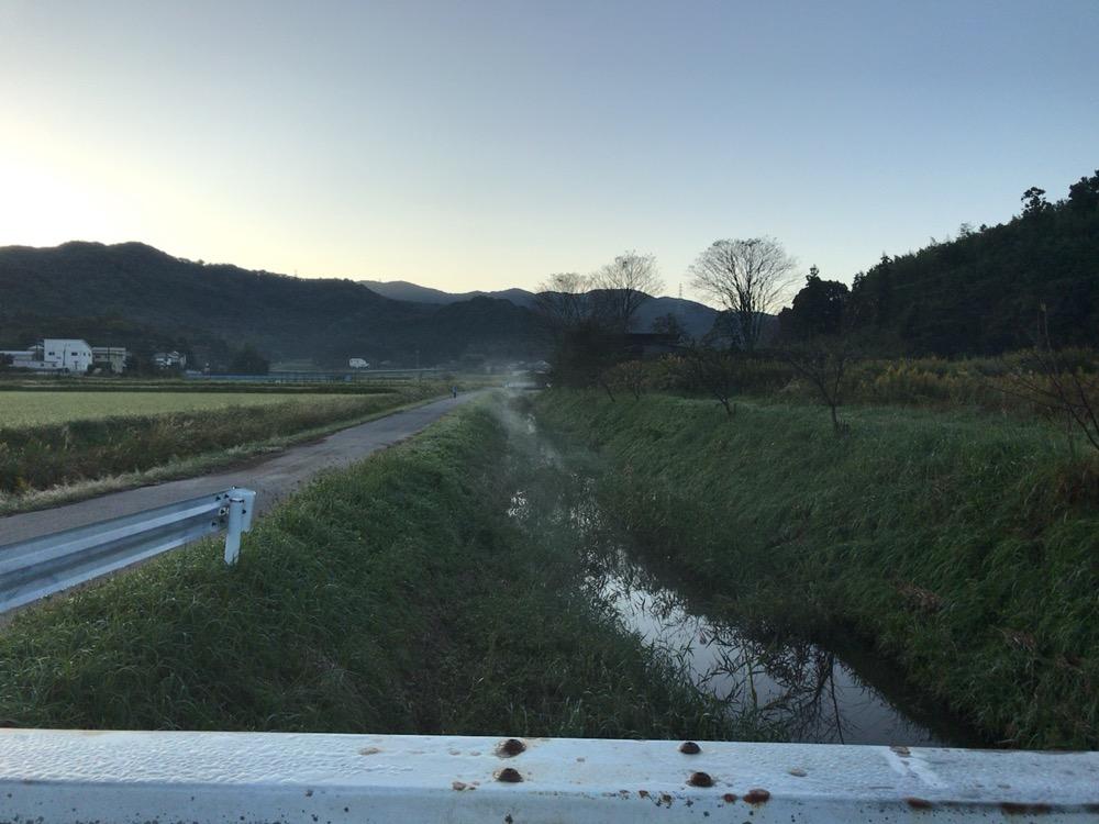 朝の土手、川から立ち上る湯気のようなもの