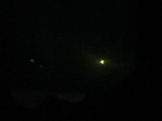 幸田町・岡崎市・豊田市を中心に注文住宅、新築一戸建てを手掛ける共感住宅ray-out(レイアウト)付近で撮影した蛍