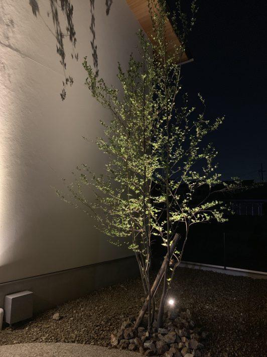 新緑の季節|岡崎市・豊田市を中心に注文住宅、新築一戸建てを手掛ける共感住宅ray-out(レイアウト)